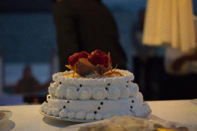 Galapagos wedding cake