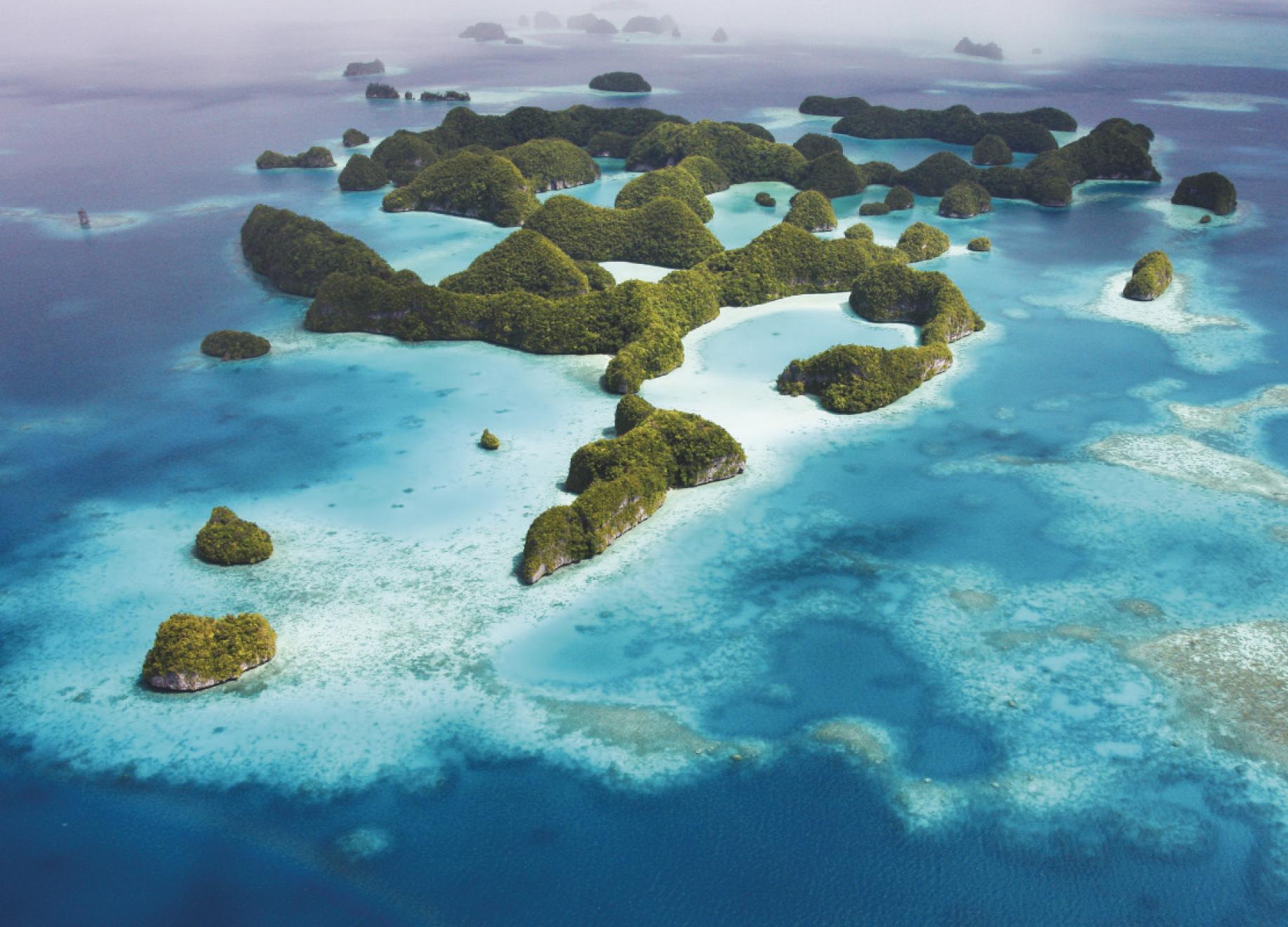Palau Wendy Capili Wilkie & Sam's Tours Palau