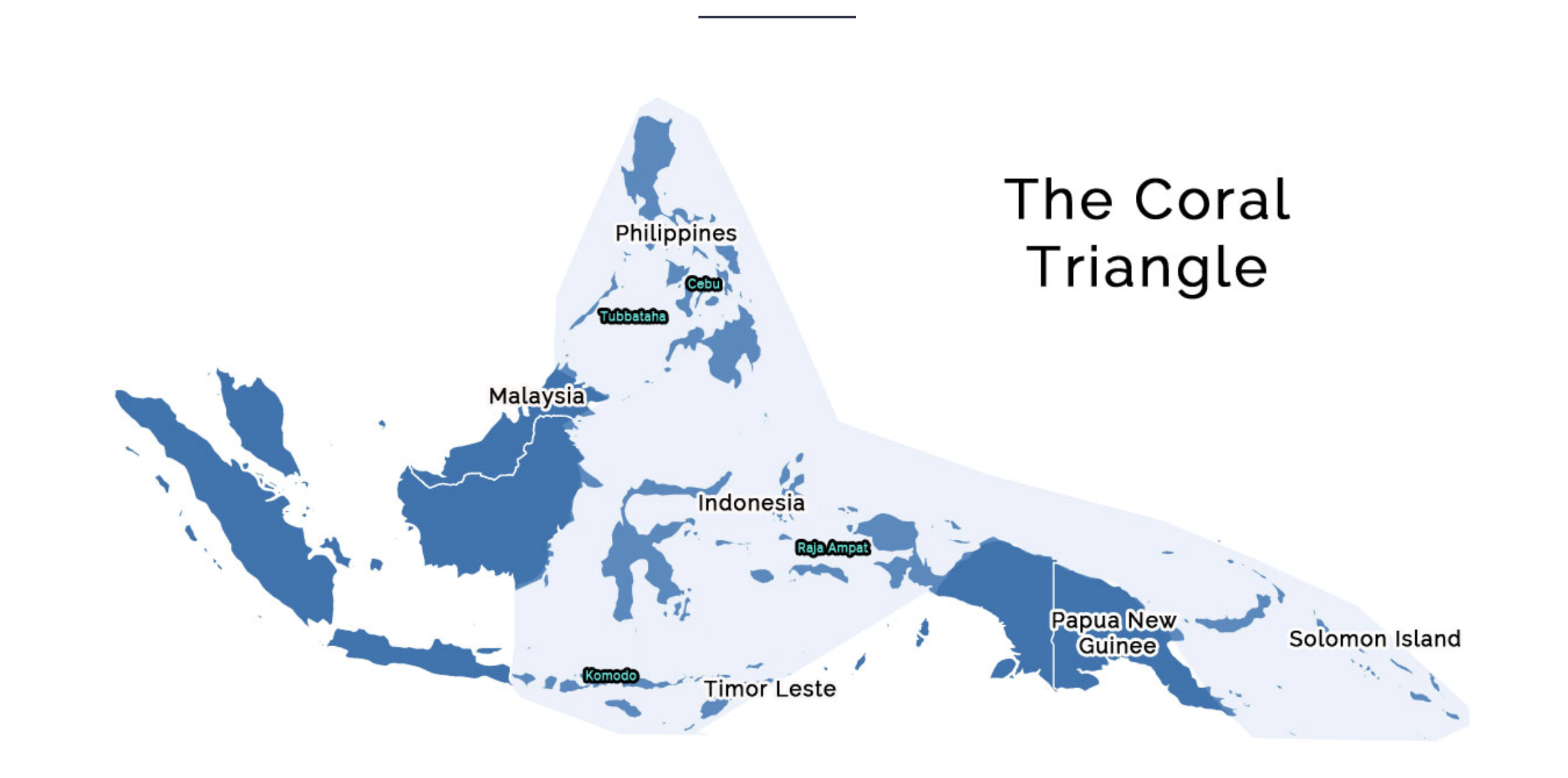Diving in the Coral Triangle