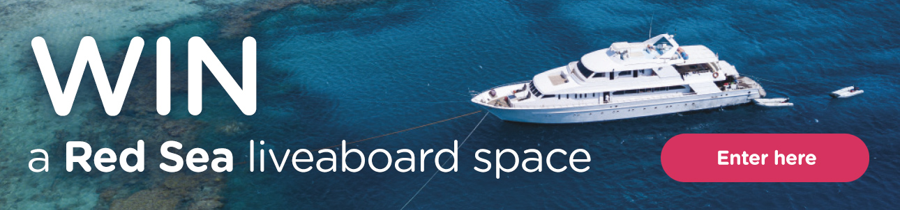 WIN a Red Sea Liveaboard Scuba Diving Space Competition